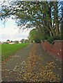 SO8984 : Footpath & cycleway to High Street, Wollaston, Stourbridge by P L Chadwick
