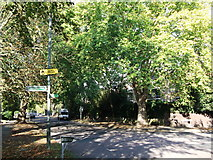 TQ3770 : Green Chain Walk on Brackley Road by David Anstiss