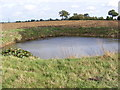 TM3073 : Pond off Cratfield Lane by Adrian Cable