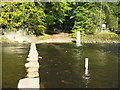 NY9939 : Stepping stones across the Wear by M J Richardson