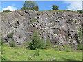 ST1785 : Disused Cefn Onn quarry by John Light