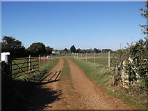 SP2504 : Track to Asthall Farm by andrew auger
