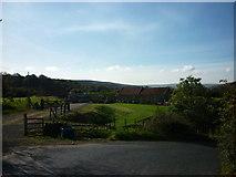 NZ7805 : Farm buildings  near Limber Hill Farm by Ian S