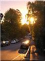 TQ3370 : Dawn, Fox Hill, SE19 by Christopher Hilton