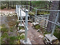 NH9207 : Cairngorm Club Footbridge, Rothiemurchus by Phil Champion