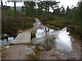 NH9107 : Footbridge and ford over a small burn, Rothiemurchus Forest by Phil Champion