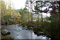 NH8907 : Burn connecting Loch Gamhna and Loch an Eilein, Rothiemurchus by Phil Champion