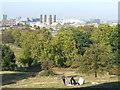 TQ3877 : Greenwich Park by Malc McDonald