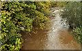 J2865 : The River Lagan at Hilden (2) by Albert Bridge