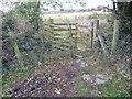 SN3758 : Old wooden kissing gate near Llwynwermod farm by Jeremy Bolwell