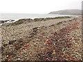 NR8835 : Beach, Machrie by Richard Webb