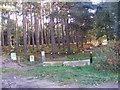 TM3856 : Sandlings Walk Path over Blaxhall Heath by Adrian Cable