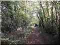 TQ3661 : Vanguard Way to Old Farleigh Road by David Anstiss