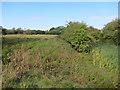 TL2958 : The Moats, Manor Farm by Hugh Venables
