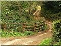 SY1391 : East Devon Way below Goosemoor Farm by Derek Harper