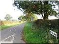 SJ5573 : Beech Lane west of Norley by Alex McGregor