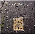 J3975 : Two Belfast Water Works access covers, Belfast by Albert Bridge