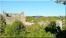 ST5394 : Chepstow Castle by Jonathan Billinger