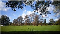 TQ0481 : Huntsmoor Park by Des Blenkinsopp