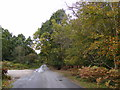 TM3855 : Iken Road, Tunstall by Adrian Cable