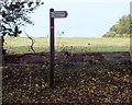 SU0728 : Across the fields by Jonathan Kington