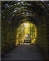 NU1913 : Alnwick Garden arbour by Paul Harrop