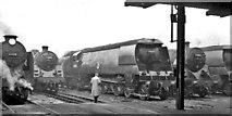 TQ2976 : Line-up of locomotives at Stewarts Lane Locomotive Depot by Ben Brooksbank