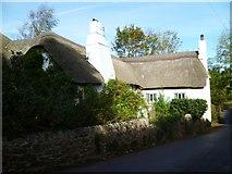 SX8359 : Orange Way in Devon and Torbay (47) by Shazz
