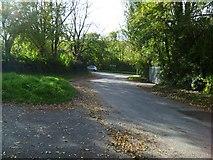 SX8360 : Orange Way in Devon and Torbay (51) by Shazz