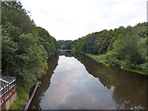 NZ2742 : River Wear from Framwelgate Bridge, Durham by Alexander P Kapp