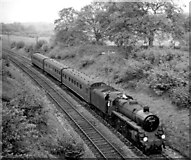 TQ1148 : Redhill - Reading train near Gomshall & Shere by Ben Brooksbank
