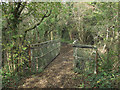SS8383 : Footbridge over the Afon Cynffig in woodland just north of Kenfig Hill by eswales