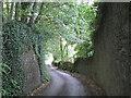 SX8350 : Steep hill southwest from Hillfield by Robin Stott
