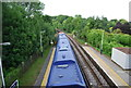 SU7310 : Train at Rowlands Castle Station by N Chadwick
