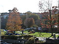 SZ0891 : Bournemouth: autumn colours by the Town Hall by Chris Downer
