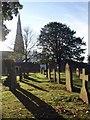 SX9165 : Churchyard, St Marychurch by Derek Harper