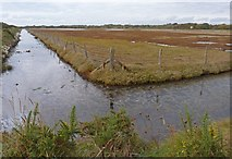 SZ3394 : Marshland at Normandy by Mike Smith
