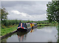 SJ5976 : Trent and Mersey Canal north of Acton Bridge, Cheshire by Roger  Kidd