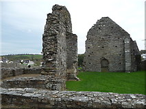 SN1645 : Part of the ruins of St Dogmaels Abbey by Jeremy Bolwell