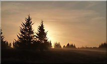 NS4660 : Autumn dawn over Bushes Golf Club, Paisley, Scotland. by Tom Pattison