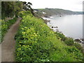 SX2653 : South West Coast Path, East Looe by Philip Halling