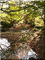 SU0394 : Not the Thames, near Ashton Keynes by Brian Robert Marshall