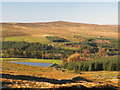 NY8645 : Pastures, Eastend Reservoir and plantations above Allenheads (2) by Mike Quinn