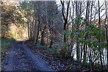 NT4933 : Former Selkirk - Galashiels railway route by Jim Barton