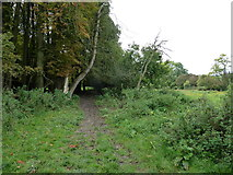SU6017 : South Downs Society Green Travel Walks Week (162) by Basher Eyre