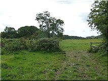 SU6017 : South Downs Society Green Travel Walks Week (165) by Basher Eyre