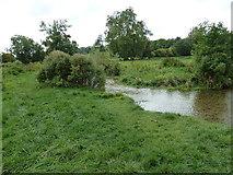 SU6017 : South Downs Society Green Travel Walks Week (172) by Basher Eyre