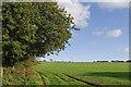 SW6032 : Field near Gwedna by Ian Capper