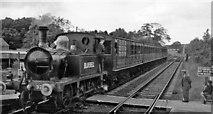 TQ4023 : Bluebell Railway train at Sheffield Park in 1961 by Ben Brooksbank