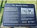 NZ3666 : Westoe Netty Plaque by Terry